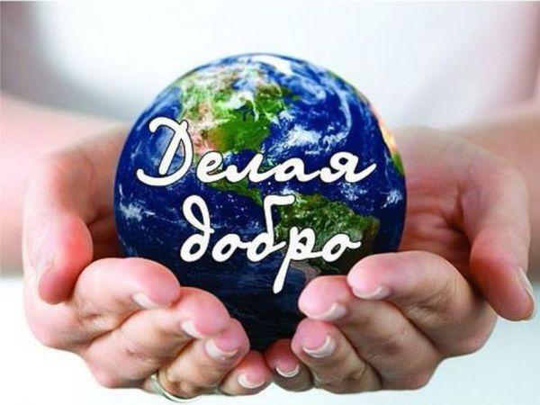 Благотворительный аукцион в помощь Лене Данилюк и Донецку начал свою работу!   Ярмарка Мастеров - ручная работа, handmade