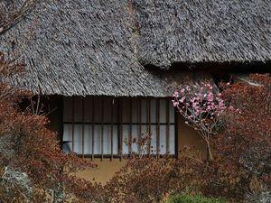 Минка – традиционный японский дом | Ярмарка Мастеров - ручная работа, handmade