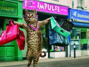 Акция в магазине с кото-подарками! Порадуйте себя и своих близких!. Ярмарка Мастеров - ручная работа, handmade.