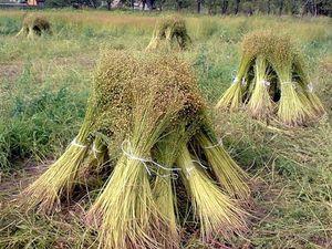 Изделие из льна -какие они бывают.. Ярмарка Мастеров - ручная работа, handmade.