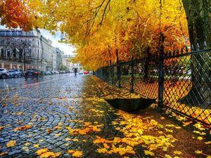Люблю осеннюю Москву. Ярмарка Мастеров - ручная работа, handmade.