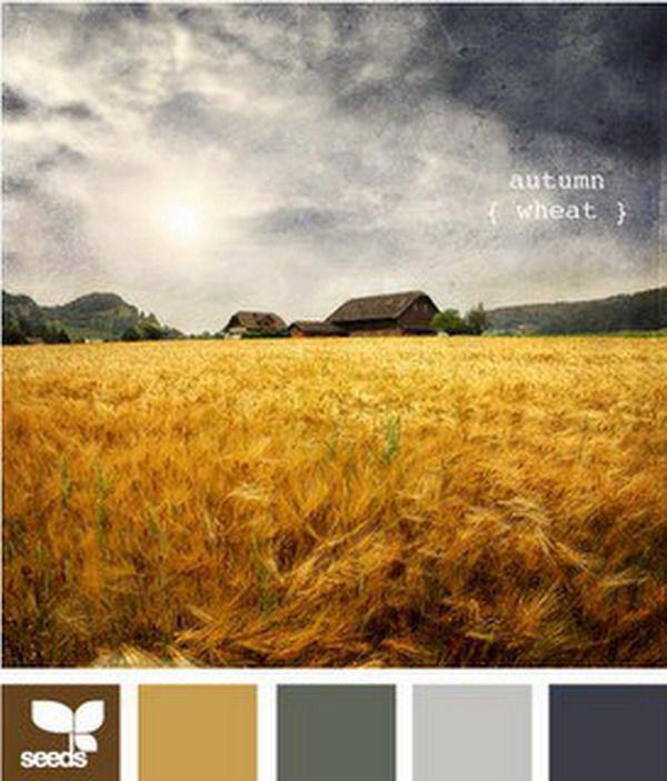 Черпаем вдохновение цветов в красках осени. Часть 13