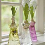 spring-flowers-new-ideas-hyacinths4.jpg