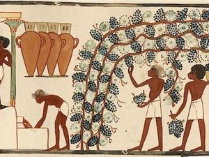 История вина. Ярмарка Мастеров - ручная работа, handmade.