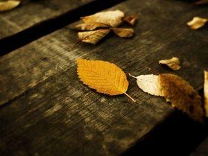 Осеннее настроение. Ярмарка Мастеров - ручная работа, handmade.