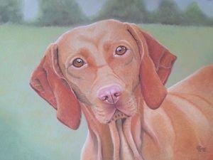 Рисуем пастелью собаку породы венгерская выжла. Ярмарка Мастеров - ручная работа, handmade.