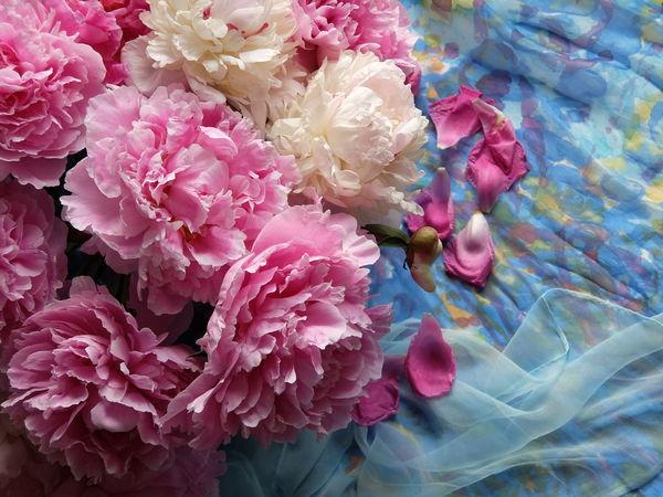 Ароматные пионы, хочу поделиться с Вами их красотой) | Ярмарка Мастеров - ручная работа, handmade