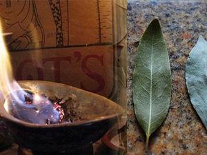 Зачем Надо Поджигать Лавровый Лист в Доме? | Ярмарка Мастеров - ручная работа, handmade