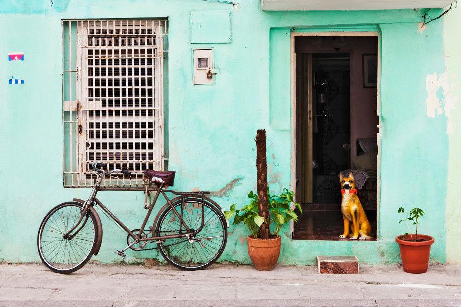 Вкус Кубы: Карибское Настроение, фото № 1