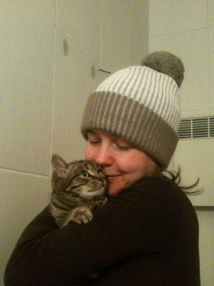 кот, котенок в добрые руки