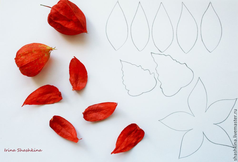 Chinese Lantern: Create Physalis Brooch Of Genuine Leather, фото № 1