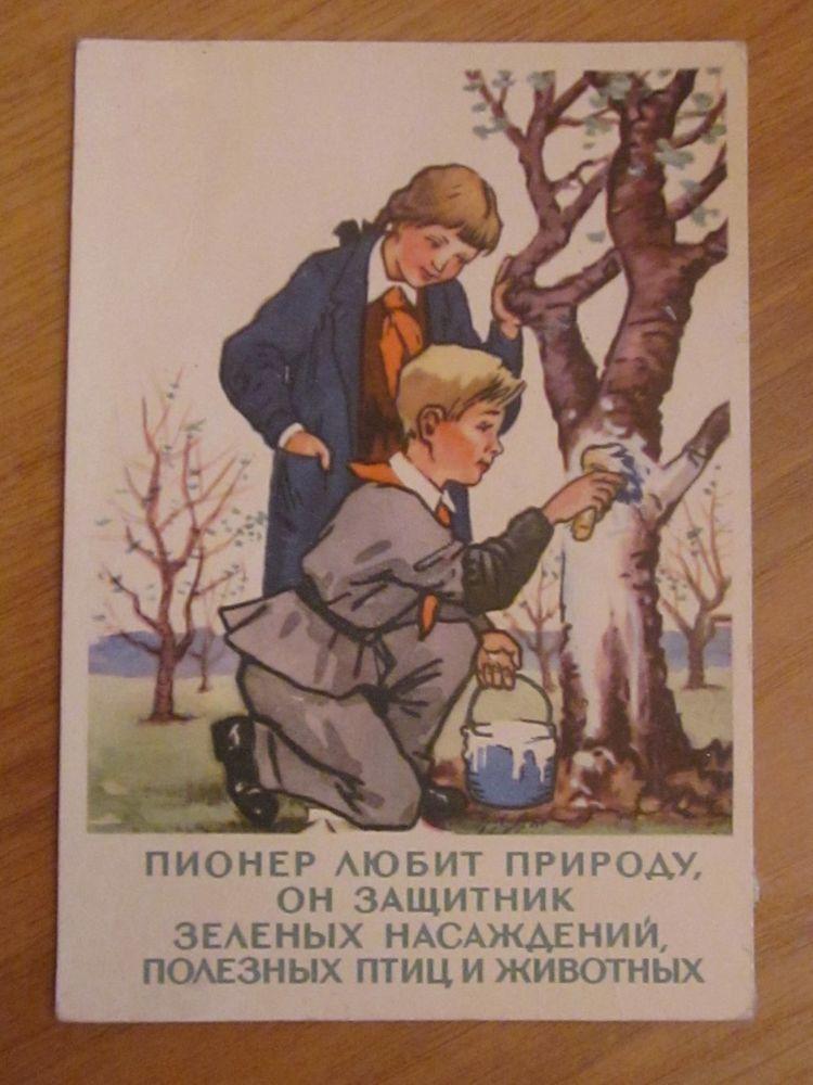 пионеры на открытках