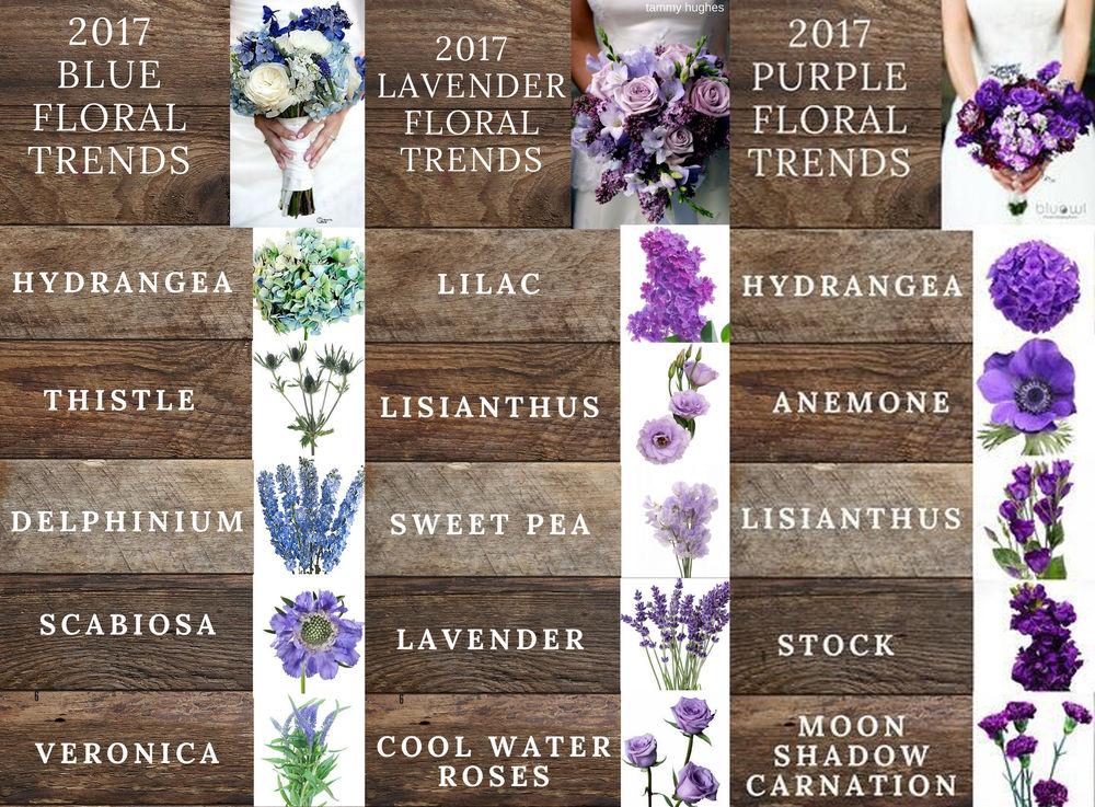 тренды во флористике, классификация цветов, синие цветы