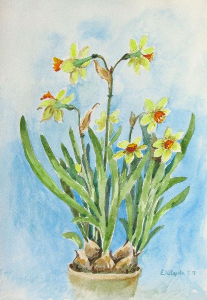 цветы акварель, елена шведова