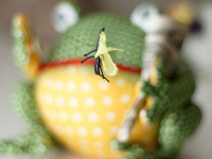 Лягушки в магазине. Ярмарка Мастеров - ручная работа, handmade.