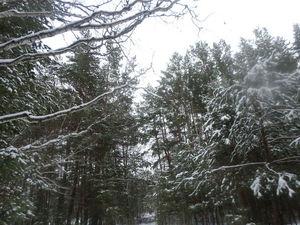 Ведьмины прогулки: шаги по снегу. Ярмарка Мастеров - ручная работа, handmade.