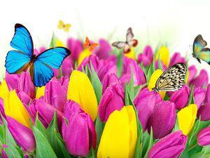 Весна стучится в каждый дом | Ярмарка Мастеров - ручная работа, handmade