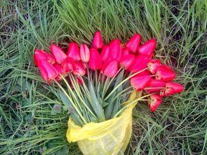Про весну, скидки и 8 - ю Марту,. Ярмарка Мастеров - ручная работа, handmade.