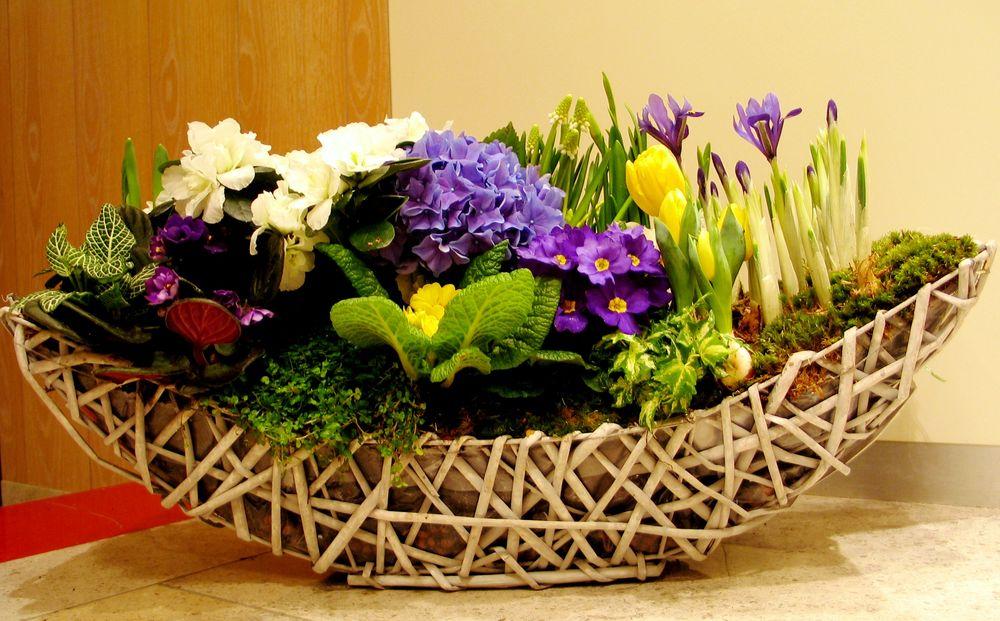 корзина, флористика, весенние цветы