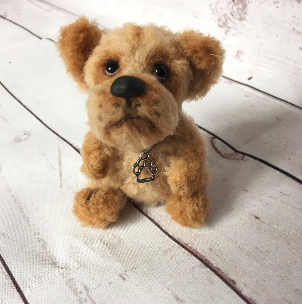 собака, тедди, щенок, спаниель, символ 2018 года