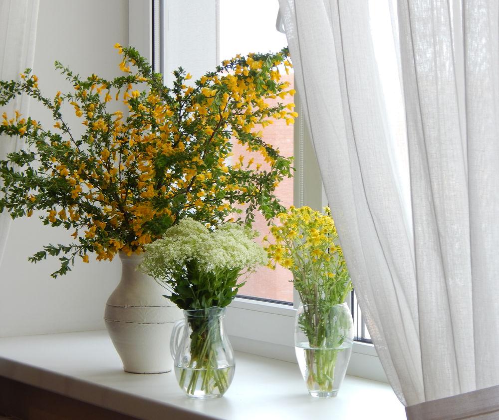 Цветущий край, Белгородчина., фото № 10