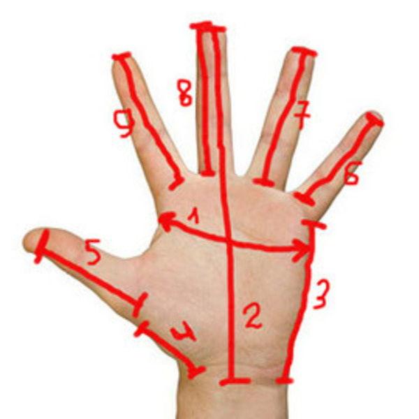 мерки, перчатки, снять мерки, связать перчатки, мерки для перчаток