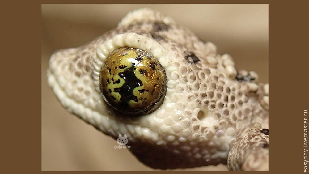 рептилия, мк