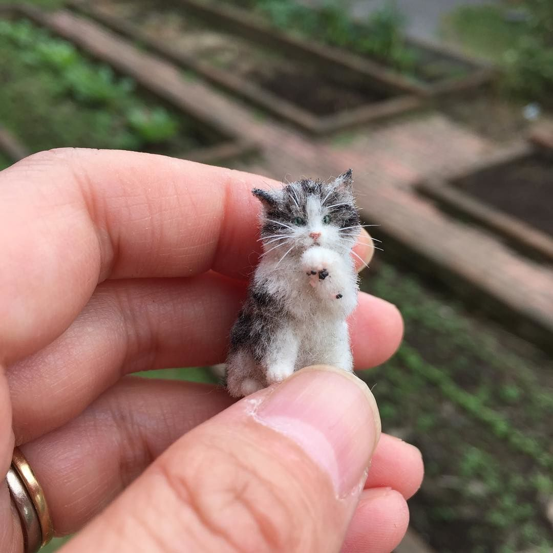 Awww Miniatures: Adorable Pets by Tomoko Masakage, фото № 17