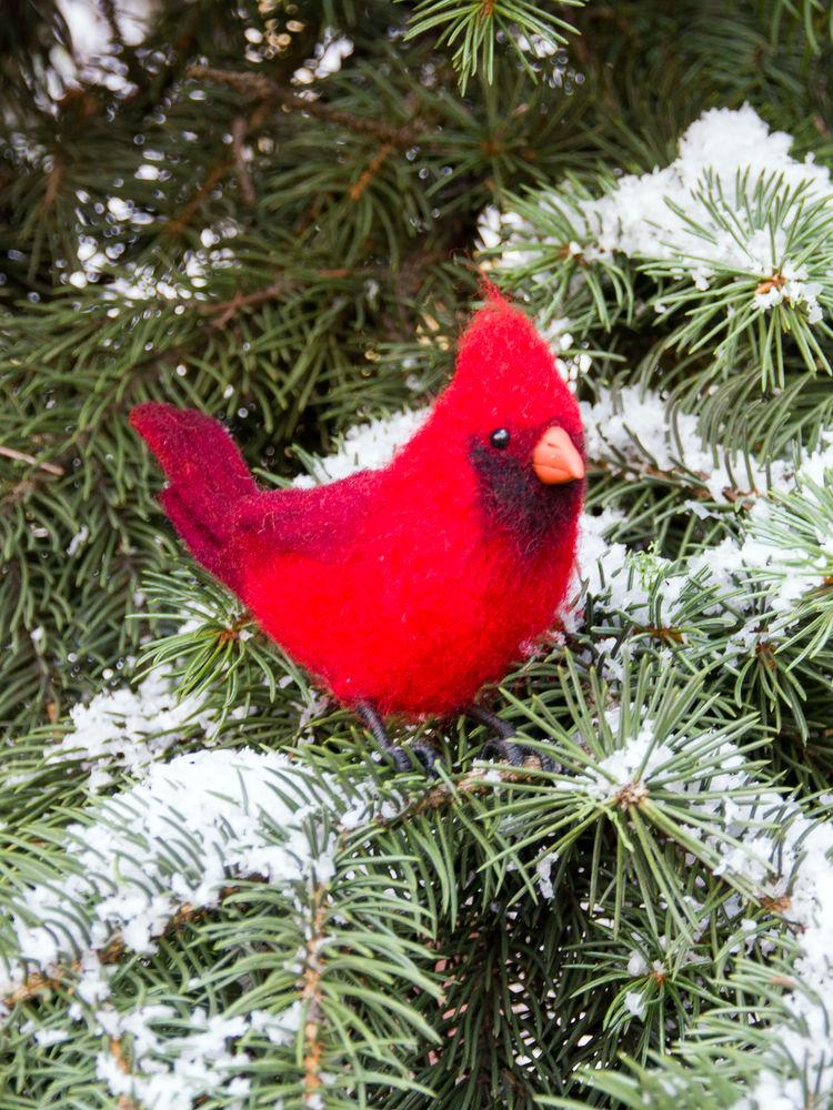 валяние для начинающих, кардинал, кардинал из шерсти