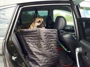 Автогамак в салон автомобиля для перевозки собаки. Ярмарка Мастеров - ручная работа, handmade.