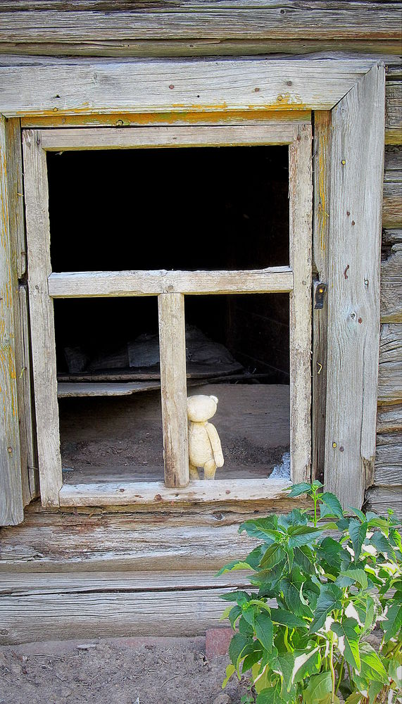стихи, фото, мишка, тедди, окно, винтаж