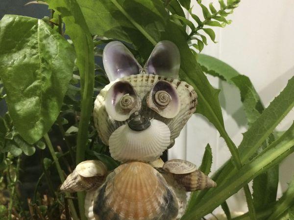 Мастерим зайчика Нюшу из морских ракушек   Ярмарка Мастеров - ручная работа, handmade