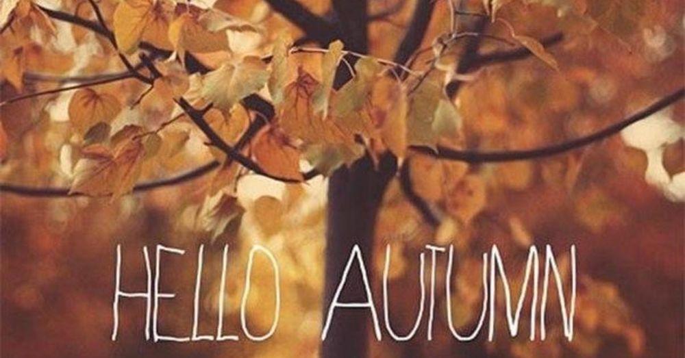 осень, сказка