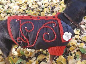 Видеоурок: шьем нарядную осеннюю куртку для собачки. Ярмарка Мастеров - ручная работа, handmade.