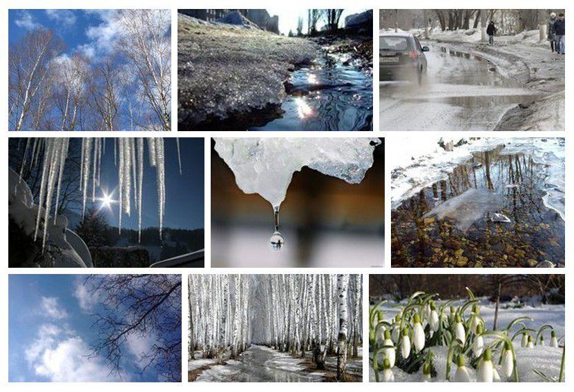весна, стихи, наталья полежаева, фотография, природа, красота