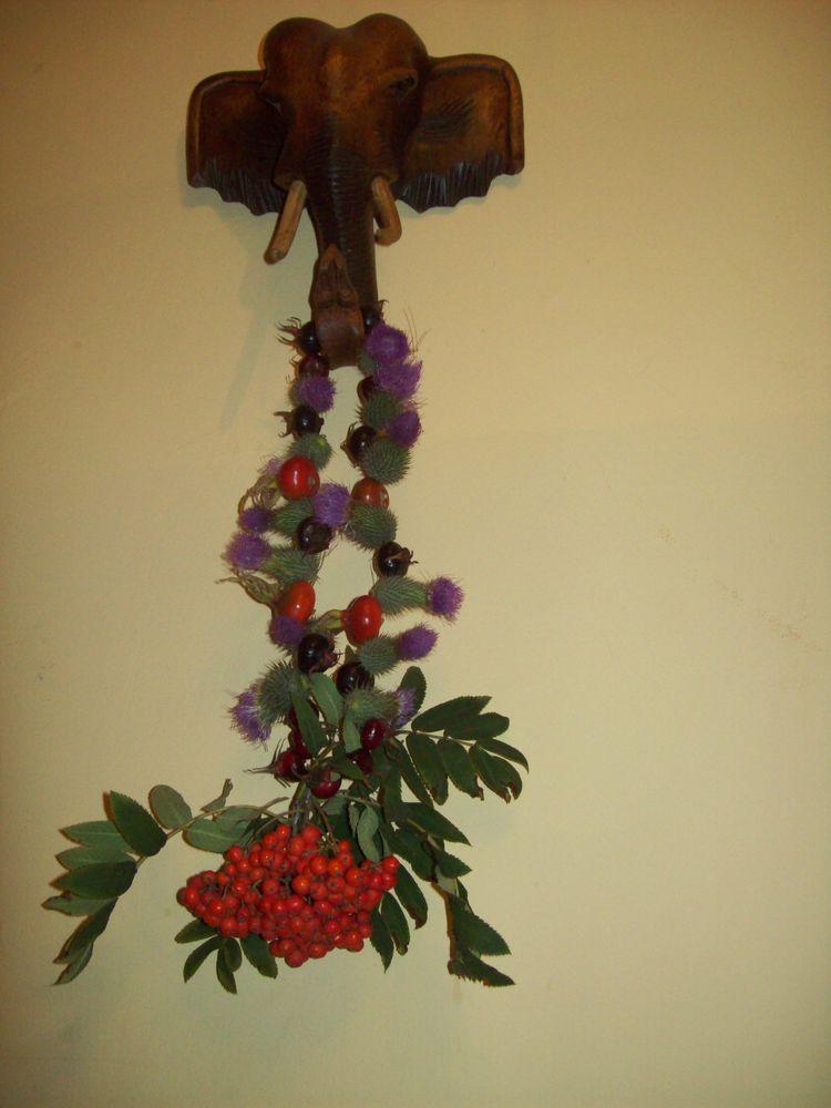 дары природы, защита, рябина, цветы, своими руками, польза, спокойствие