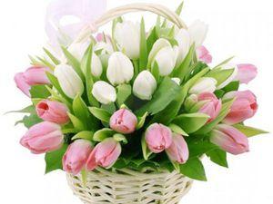 8 марта женски новый год!!!   Ярмарка Мастеров - ручная работа, handmade