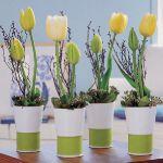 spring-flowers-new-ideas-tulip2-3.jpg