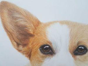 Как я рисовала собаку цветными карандашами. Ярмарка Мастеров - ручная работа, handmade.