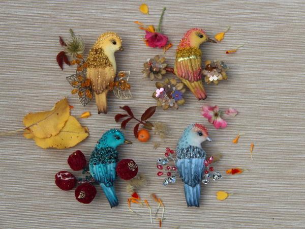 Коллекция брошечек-птичек