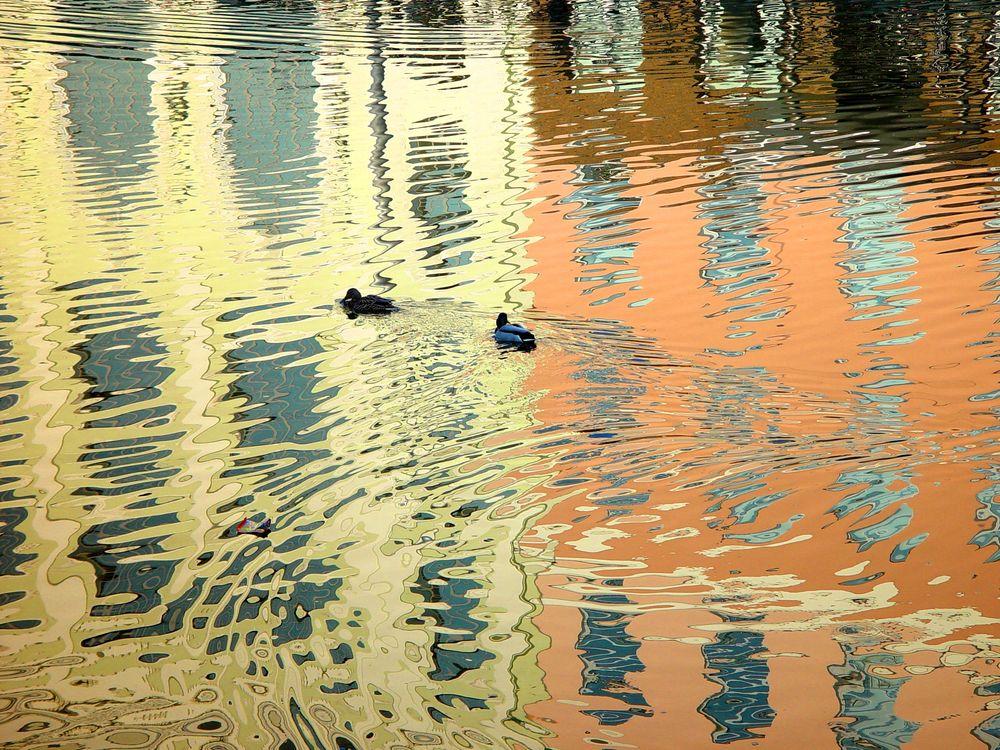 фотография, река
