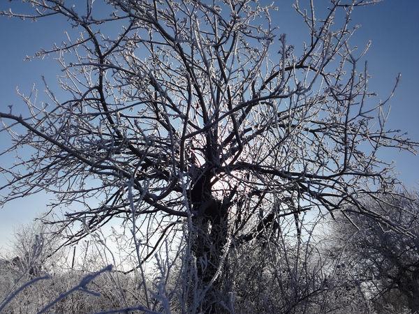 Зимние пейзажи. | Ярмарка Мастеров - ручная работа, handmade