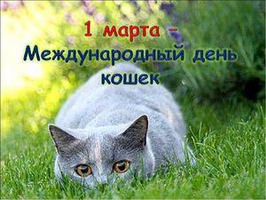 1 марта-Всемирный день кошек. Ярмарка Мастеров - ручная работа, handmade.