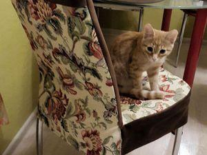 Шьём чехол для ободранного стула. Ярмарка Мастеров - ручная работа, handmade.