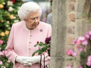 Лондон в цвету: что интересного на Chelsea Flower Show 2018 и при чем тут королевская свадьба. Ярмарка Мастеров - ручная работа, handmade.