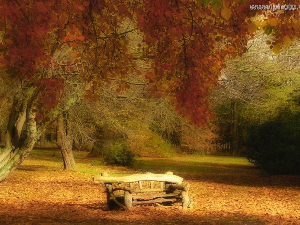 Осенний бумеранг доброты