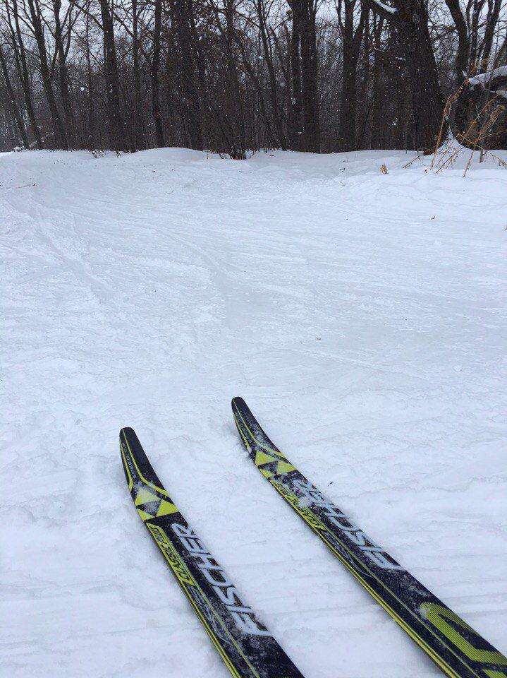 зимняя прогулка лыжи