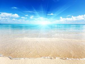 "Набор мастеров на аукцион ""Лето, Море, Солнце, Пляж!"". Ярмарка Мастеров - ручная работа, handmade."