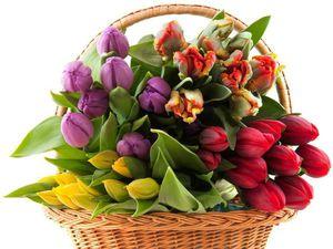 Скидка на весенние цветочные шарфики | Ярмарка Мастеров - ручная работа, handmade