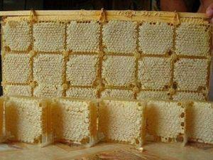 Сотовый мед. Ярмарка Мастеров - ручная работа, handmade.